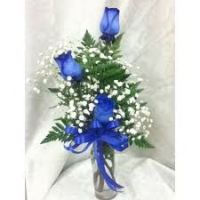 Three blue roses