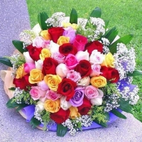 72  Mix Roses Bouquet